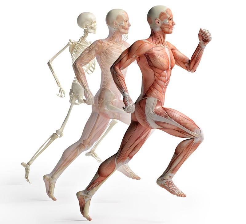 medical-health-training